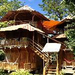 Private Treehouse Jungle Cabanas