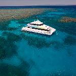 Snorkel and Dive the Great Barrier Reef