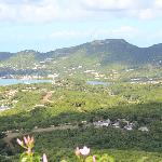 View from Shirley Heights
