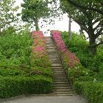 2012年5月 古墳の頂上への階段