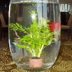 Table deco - gold fish in vase