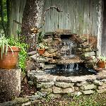 Outdoor Fountain at Chicken Coop