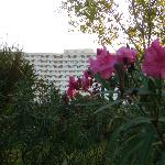 In the garden, Athos Palace, Sept 2012