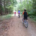 Mountain biking in Hanmer forest