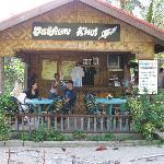 Bakau Kiwi Foto