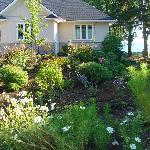 The Street side garden