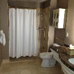 Executive Bath - Shower side