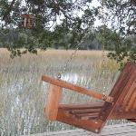 Relaxing in a swing in the backyard