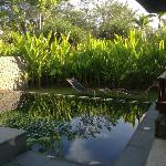 our pool villa - private and hidden