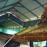 snakeboat
