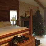 cabin with a lovely Christmas tree