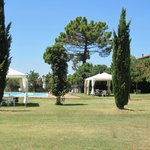 Fattoria Isola, Laterina, ligweide met zwembad