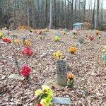 numerous gravesites