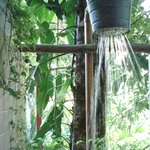 wonderful outdoor shower looking at the jungle