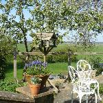 Garden looking towards Wildbrooks
