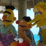 Bert, Ernie & Big Bird at the photo shoot
