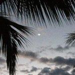 noche de luna...