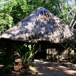 A Mayan Hut in the Botanical Garden.