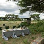 Lunch im Busch