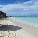 Pheonix Beach