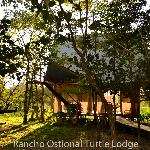 Ostional Turtle Lodge Foto