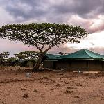 Ang'ata Migration Camp Ndutu