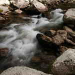 Babblng Brook in the Smokies
