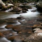Nearby Stream in the Smokies