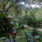 La vue depuis la terrasse de la casita au fond du jardin