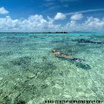 Paradise Tahiti c Steve Turner Photography
