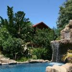 Littlewood Garden Pool, Waterfall and Sunbird Cottage