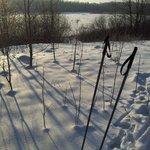 Лыжи на берегу Волги