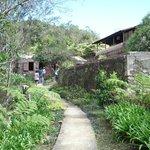 Entrance to plantation.
