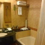 toilet shower area and bath tub