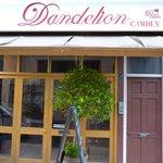Dandelion cafe in Camden