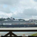 Holland American cruise line