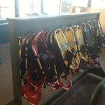 Rent Snowshoes!