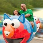 Enjoy Whirling Rides!