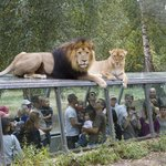 Parc Zoologique et Chateau de Thoiry