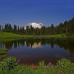 Mount Rainier and Tipsoo Lake and some wild flowers