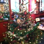 Travel Joy Hostel's xmas tree