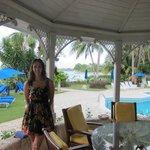 Outdoor dining table/gazebo