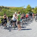 help and advice on bikes