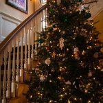 Inn at Jackson Christmas Tree