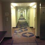 Ooh, Ahh.  Hotel Cooridor.  But it's Nice!