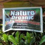 Nature Organic - lovely home cooked food