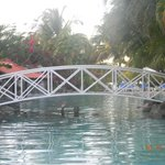 A bridge across the Oasis swimming pool