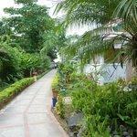 Pathway through grounds