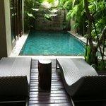 shady pool