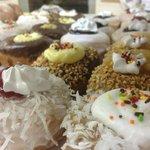 Holtman's Doughnut Shop